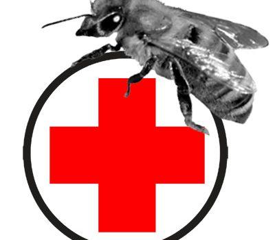 Apitherapie (Bienenheilkunde) für Imker